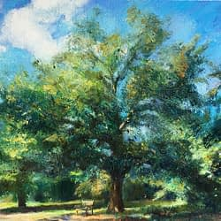 big tree oil Landscap img_11