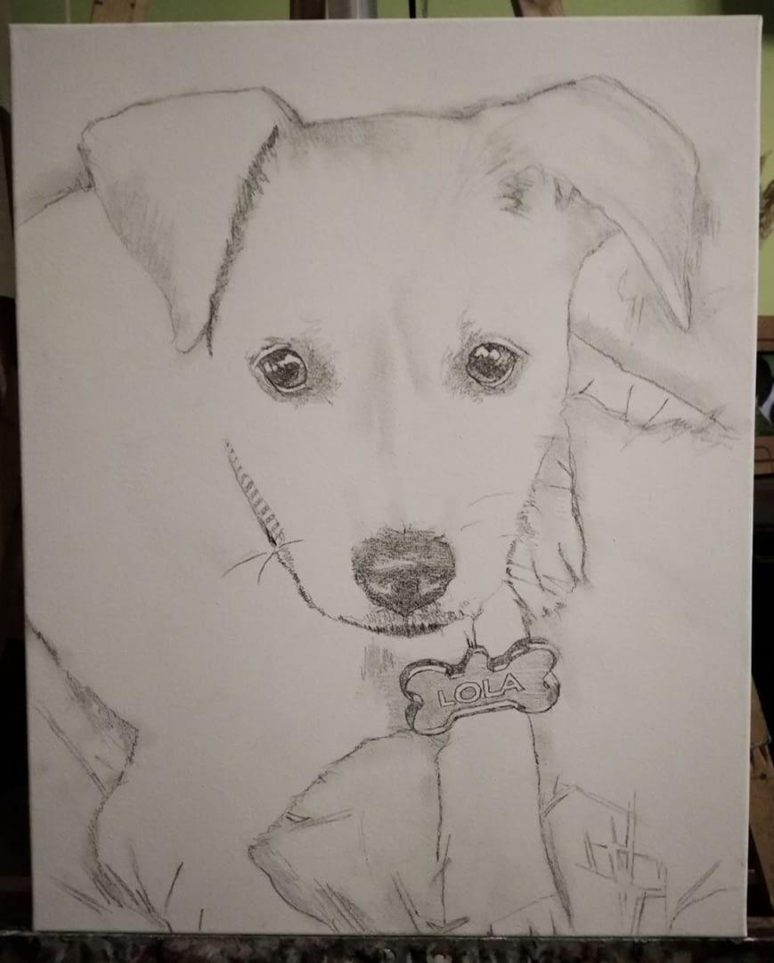 Janet pet portrait img_6