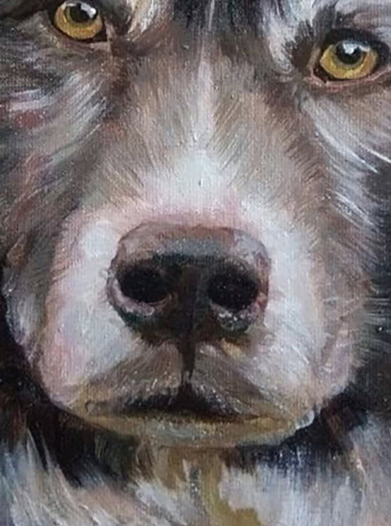 Laura dog portrait img_2