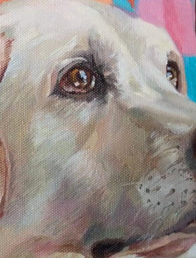 Megan dog portrait img_1