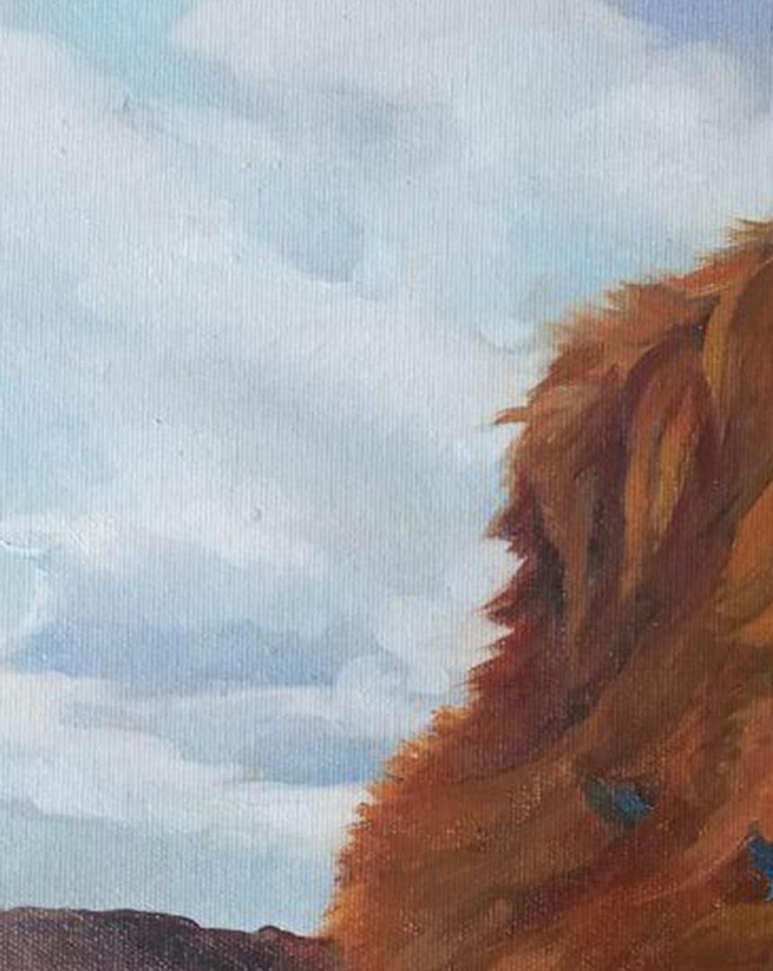 Robin dog portrait img_2